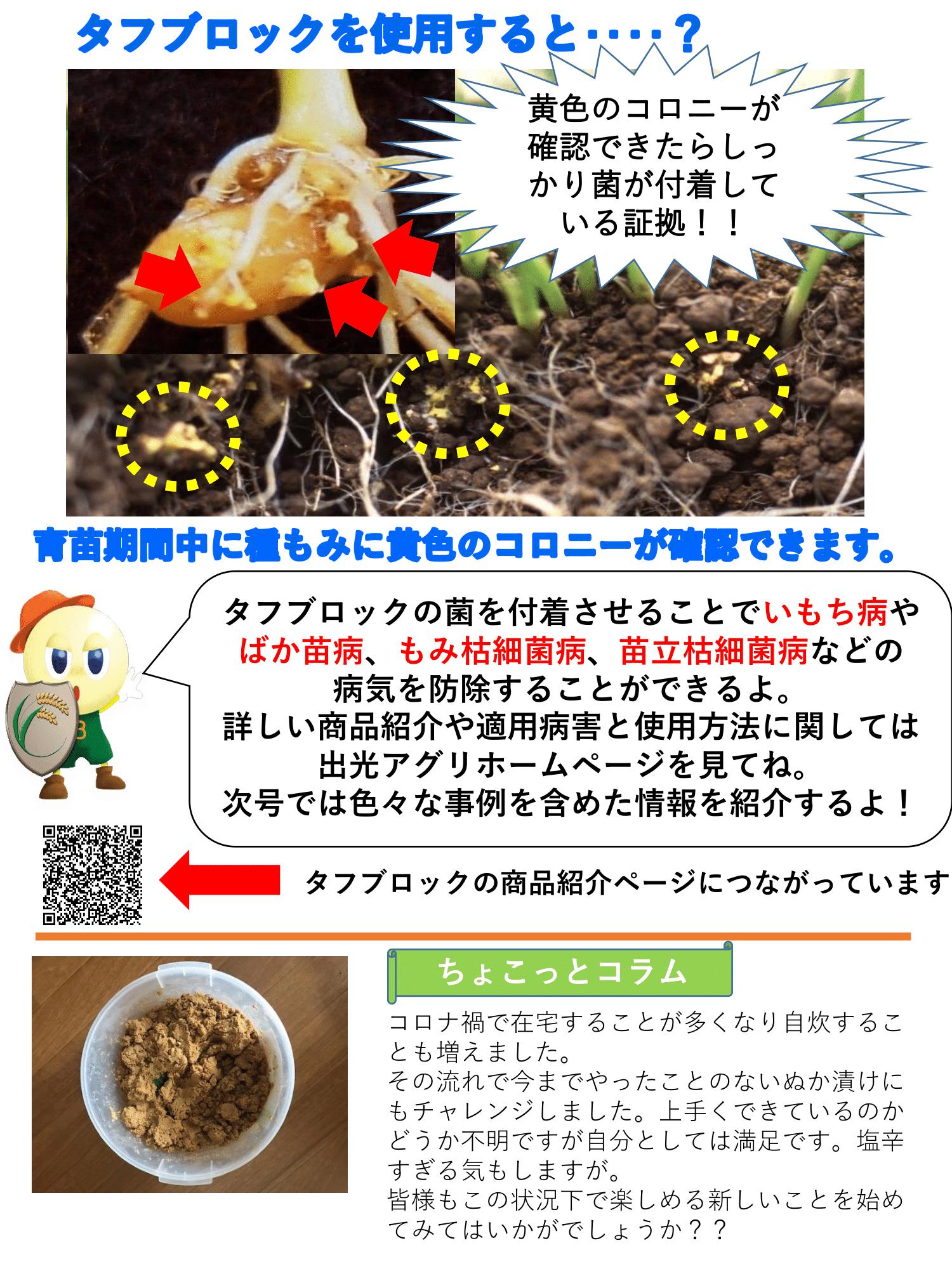 news_2011_2